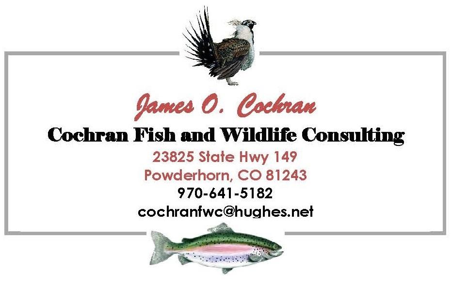 CFWC Business Card_New_3-15-17.jpg