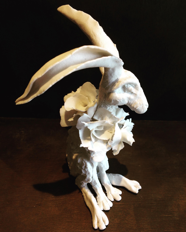 'Collared Hare II'