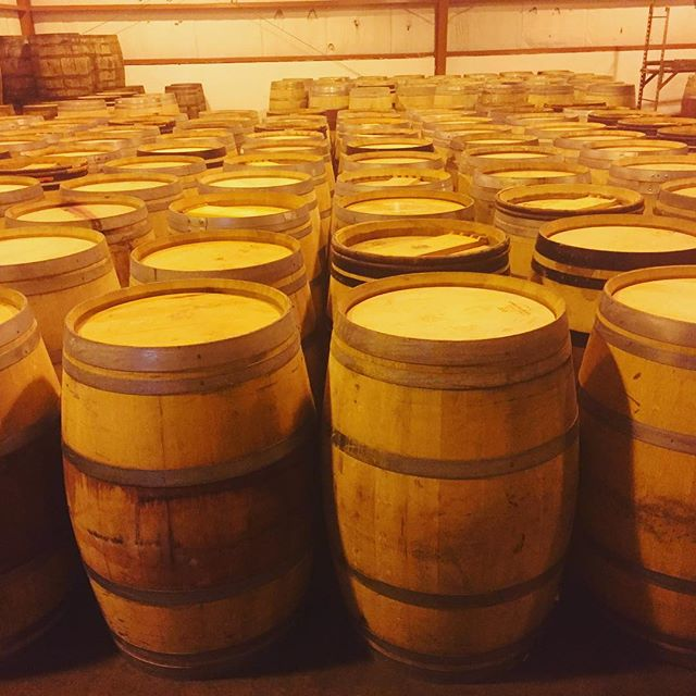 Standing tall and standing proud. These wine barrels are ready to be sent out to their next destination to be refilled with cider and beer 🍻 #barrelagedbeer #winebarrel #cider #hardcider #craftbeer #barrelaged #mountainfruit #cabernetsauvignon #merlot #pinotnoir #fresh