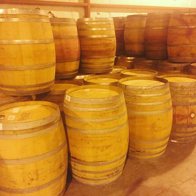 Just emptied neutral Pinot Noir barrels from the Russian River Valley. Nice and tight and ready to refill. 🤙🏽🤙🏽🍷🍻 cheers! #pinotnoir #barrels #winebarrelfurniture #bourbonbarrelaged #winebarrelaged #russianrivervalley #wine #bourbonbarrel #whiskeybarrel #fresh