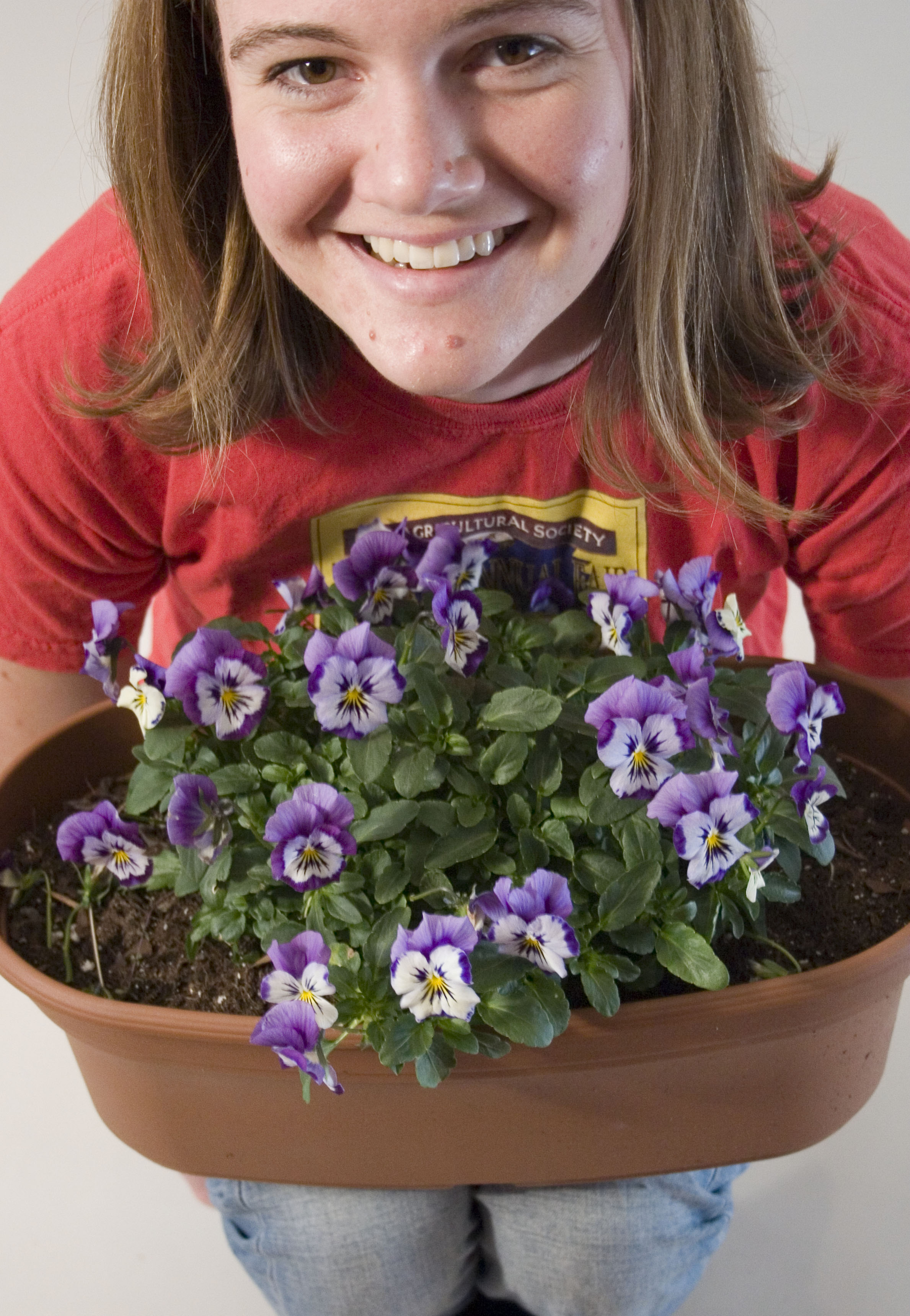 Meg Pansies Close Up.jpg