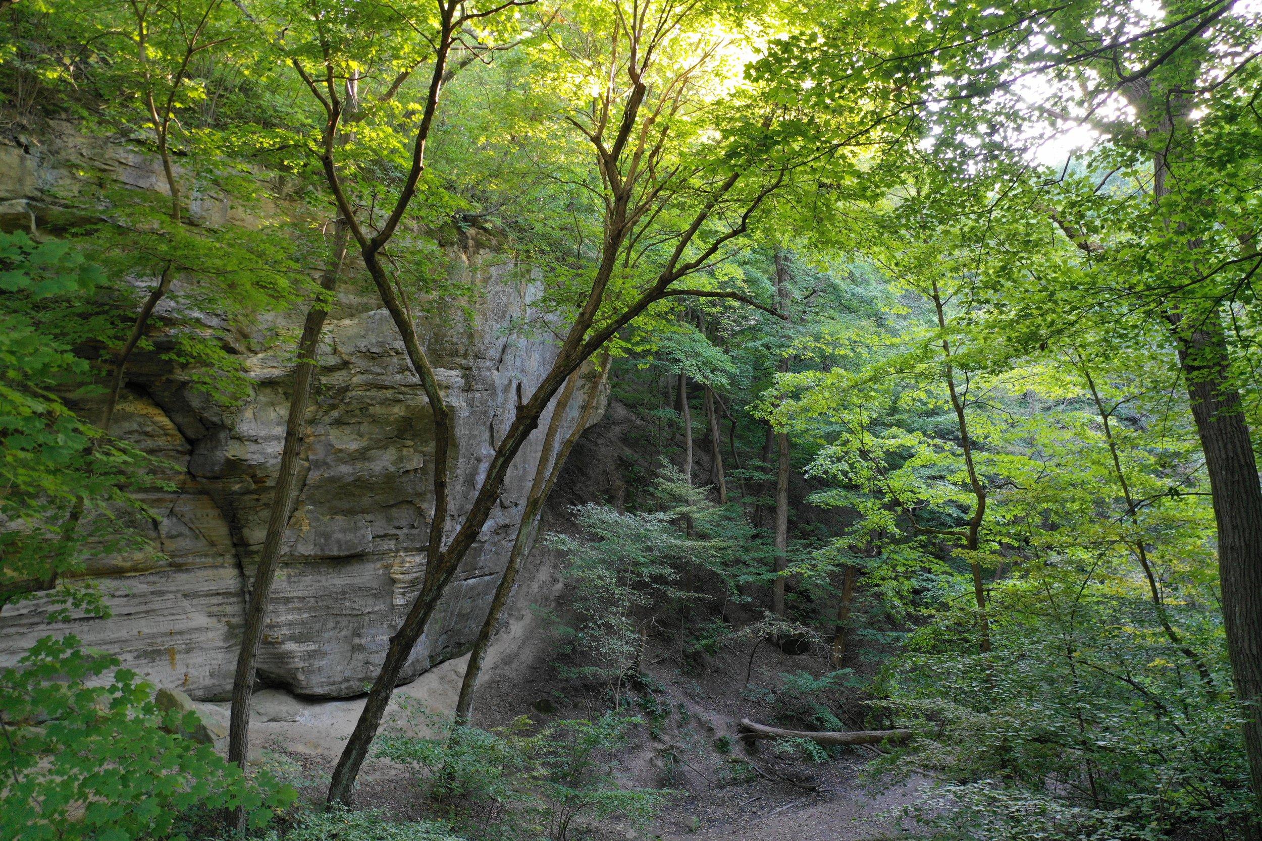 M2P ottawa canyon raw.jpeg