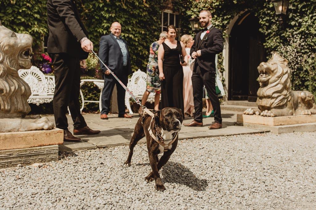cloonacauneen castle wedding-21.jpg
