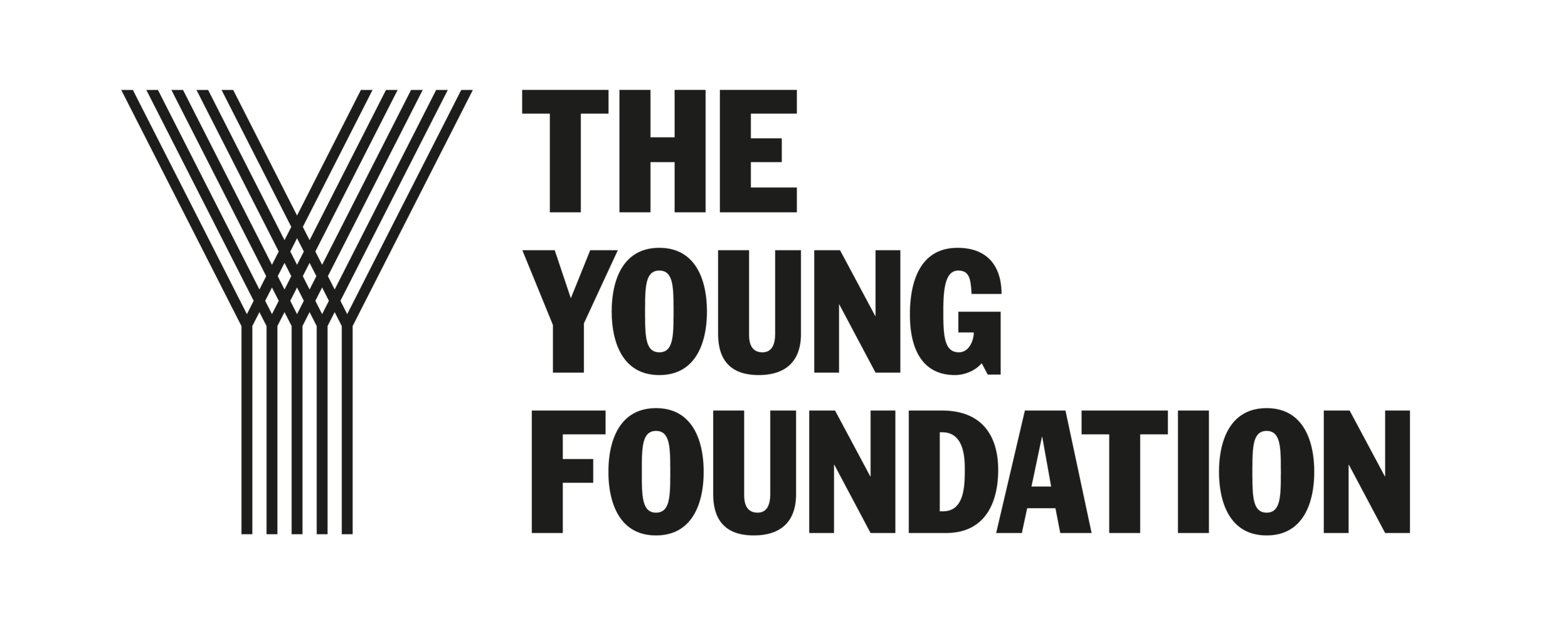 YoungFoundationPNG.png