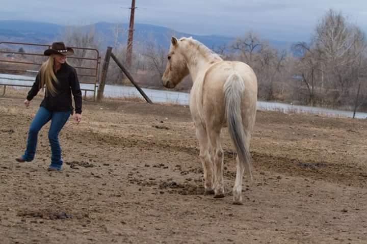 horseplay with ollie.jpeg
