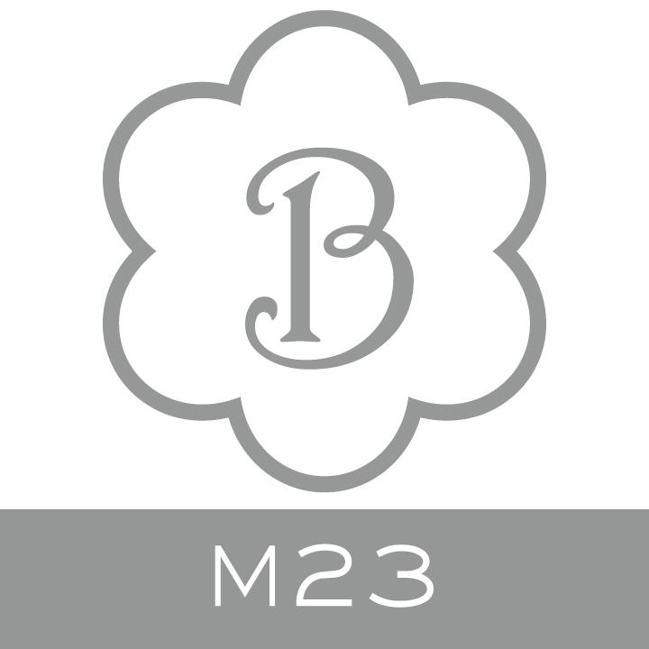 M23.jpg.jpeg