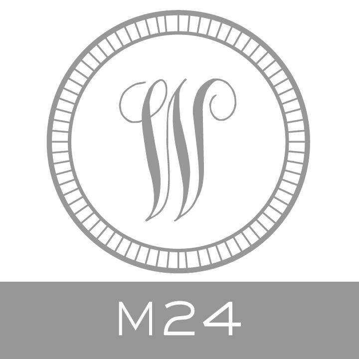 M24.jpg.jpeg