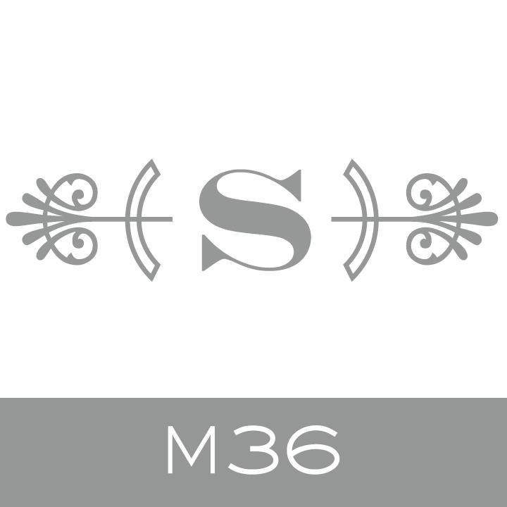 M36.jpg.jpeg