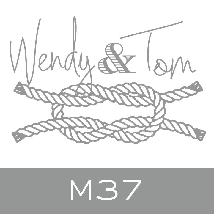 M37.jpg.jpeg