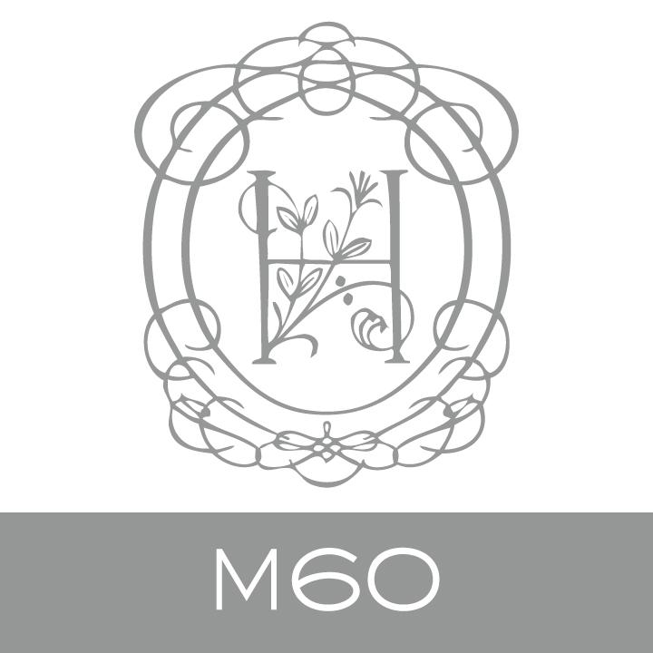 M60.jpg.jpeg