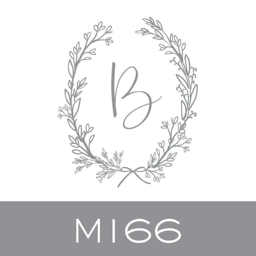M166.jpg.jpeg