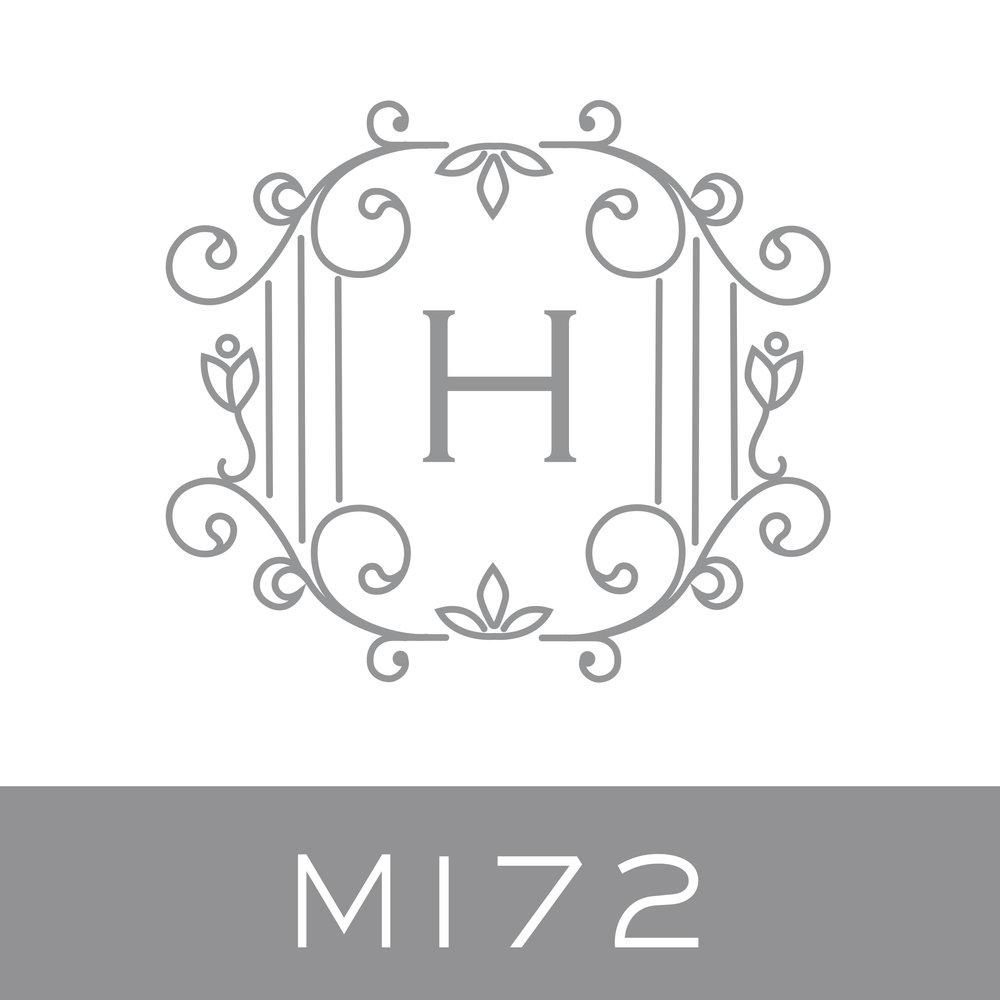 M172.jpg.jpeg