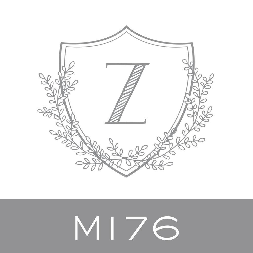 M176.jpg.jpeg