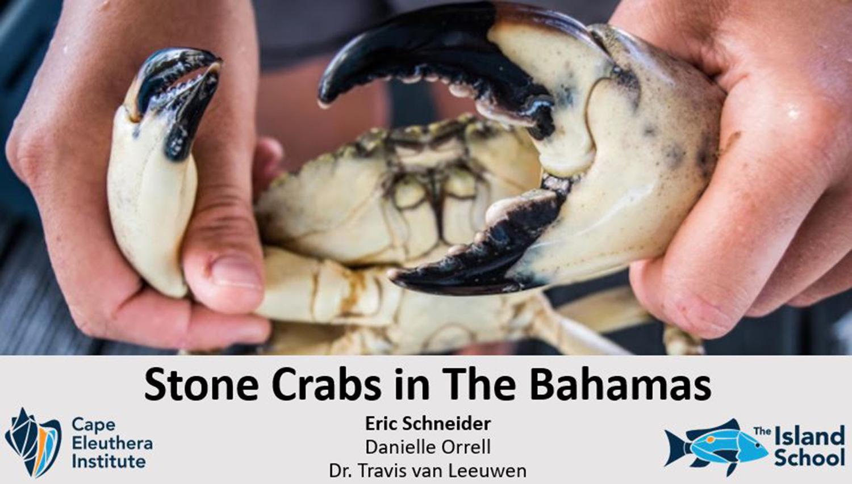 Crab_ASAC.jpg
