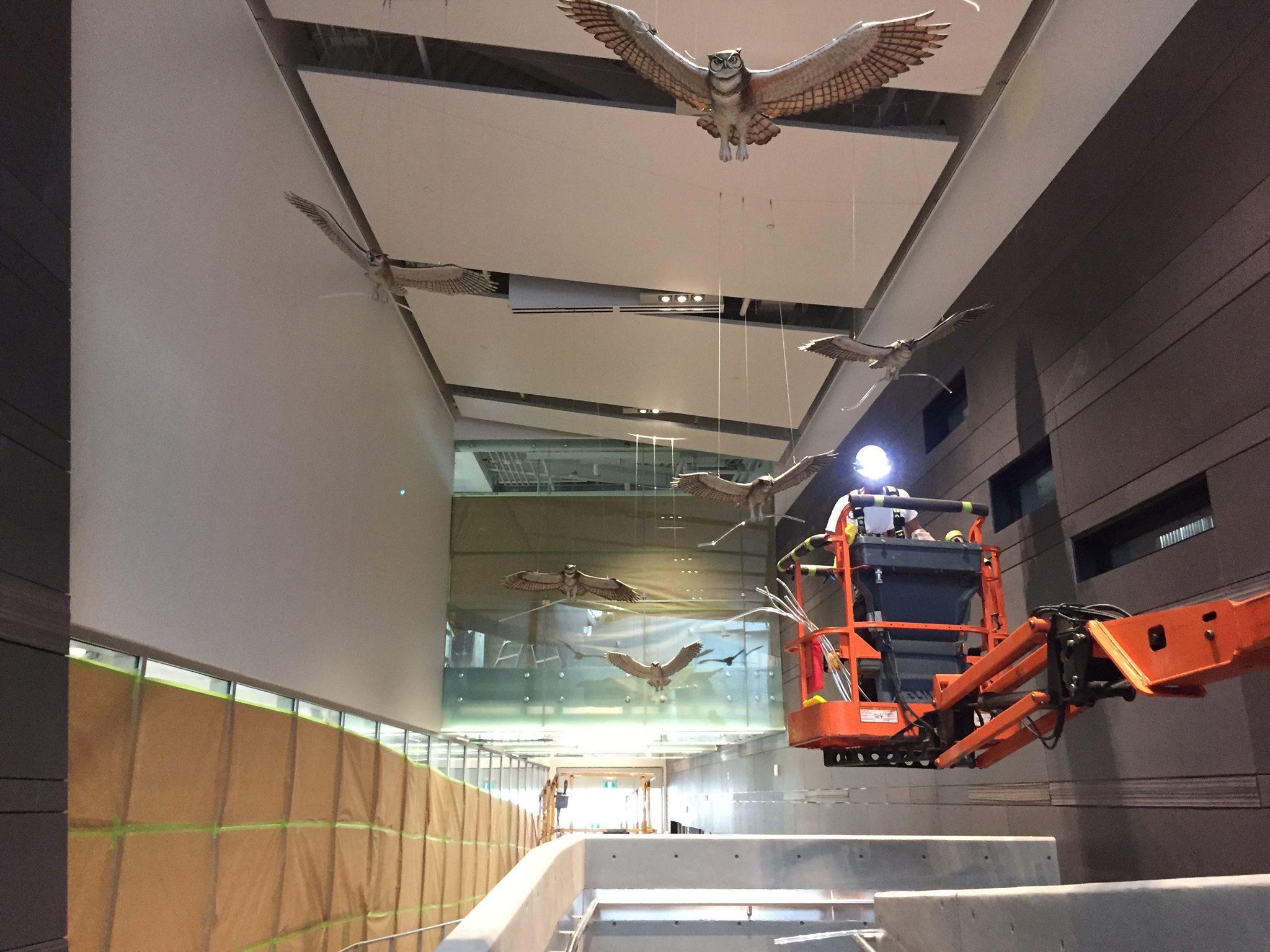Calgary_The Nest_Donald Lipski_Public Art Services_J Grant Projects_18.jpg