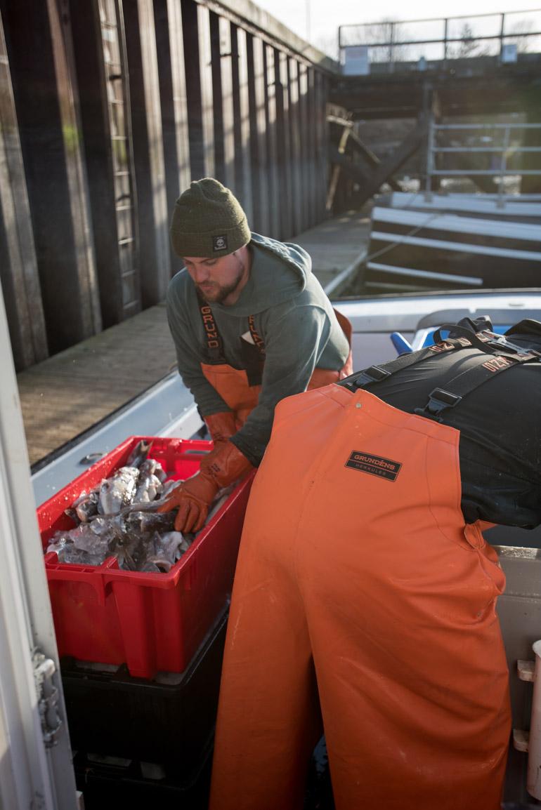 New England Fishmonger.jpg