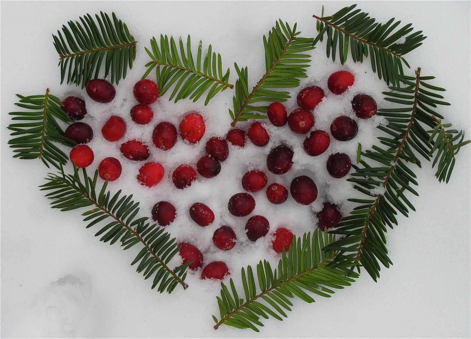 Evergreen&Cranberry Land Art Heart2.jpeg