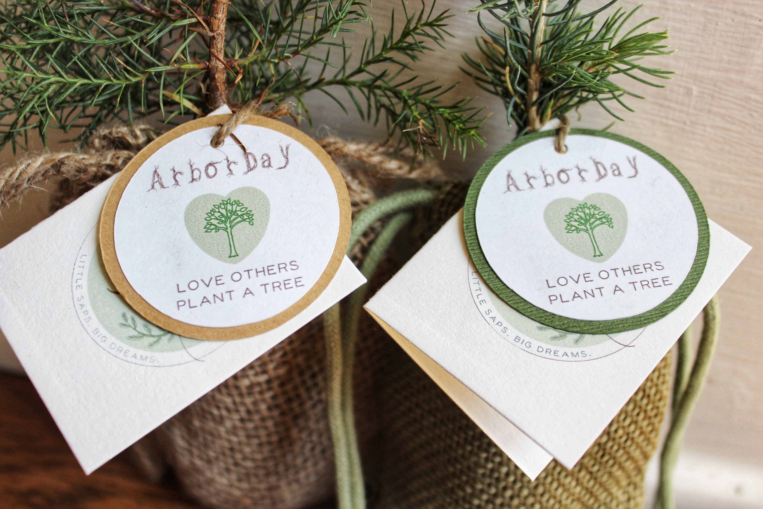 Celebrate Arbor Day with Little Saps