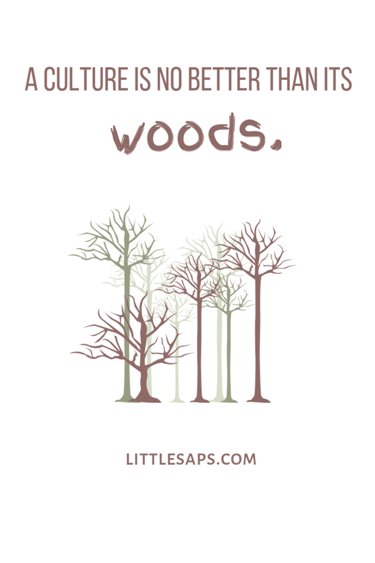 Woods Quote.PNG