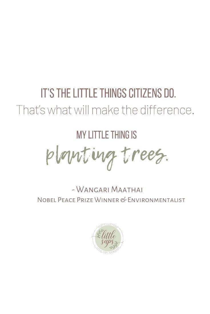 Maathai Quote.jpg