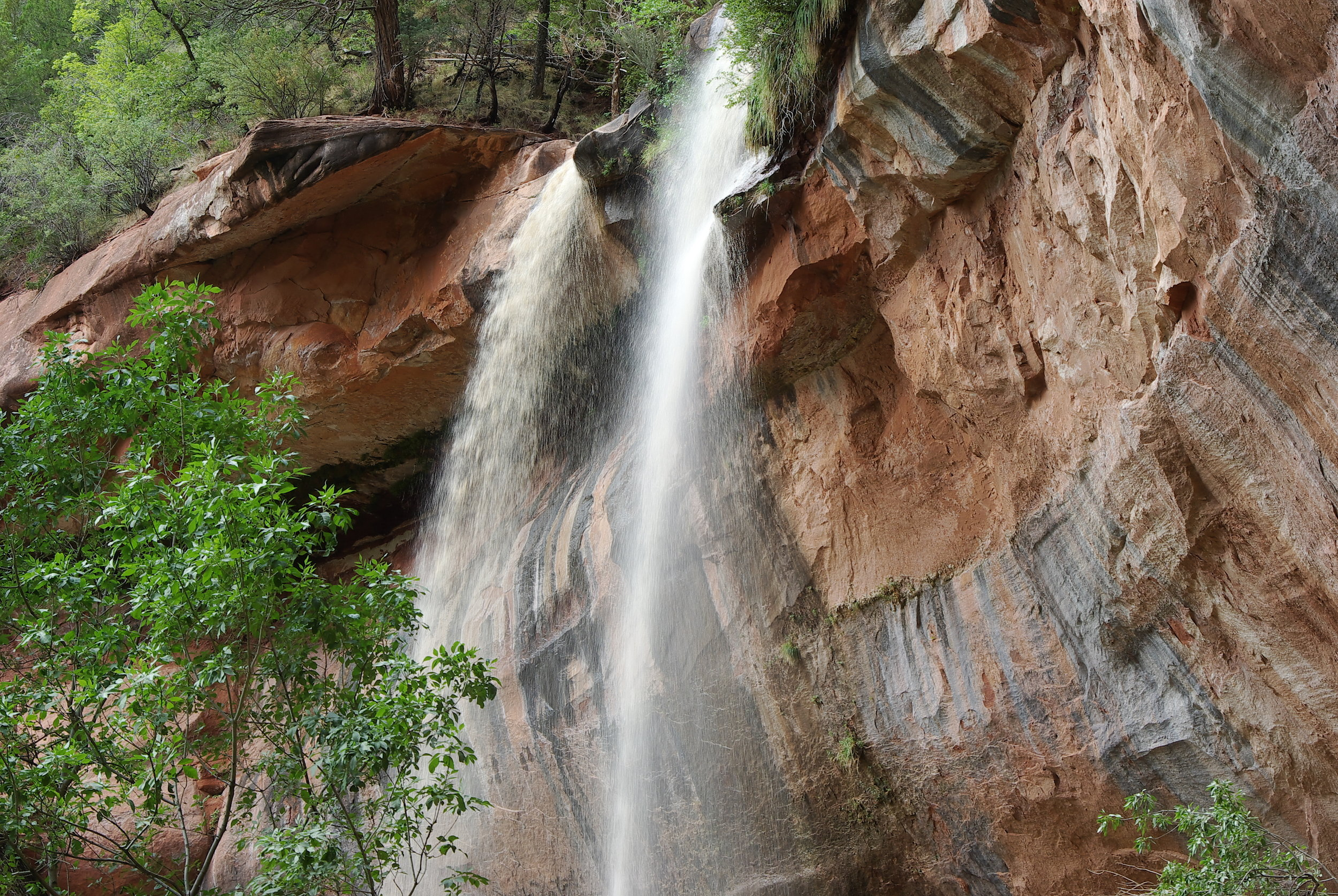 Emerald Pools - Zion National Park