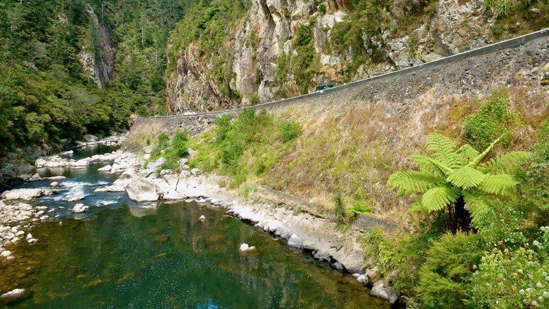 The drive through the Karangahake is amazing. Loads of cool hikes too!