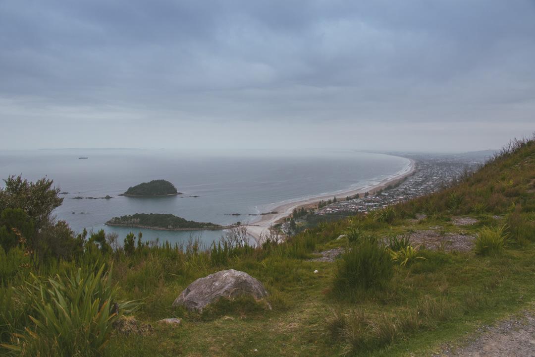 Moturiki Island is easily reachable at low tide.