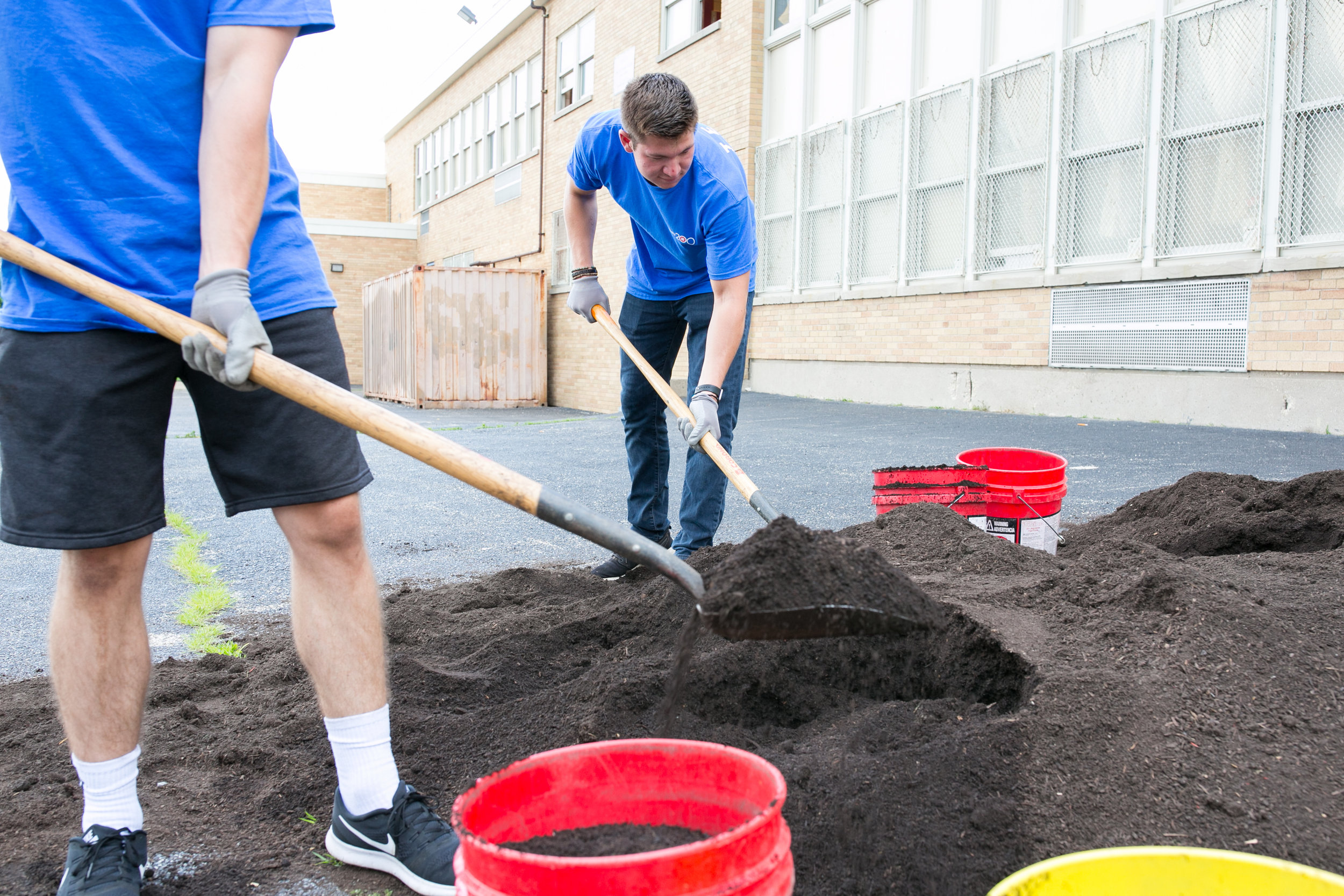 Volunteer Day for BMO Bank