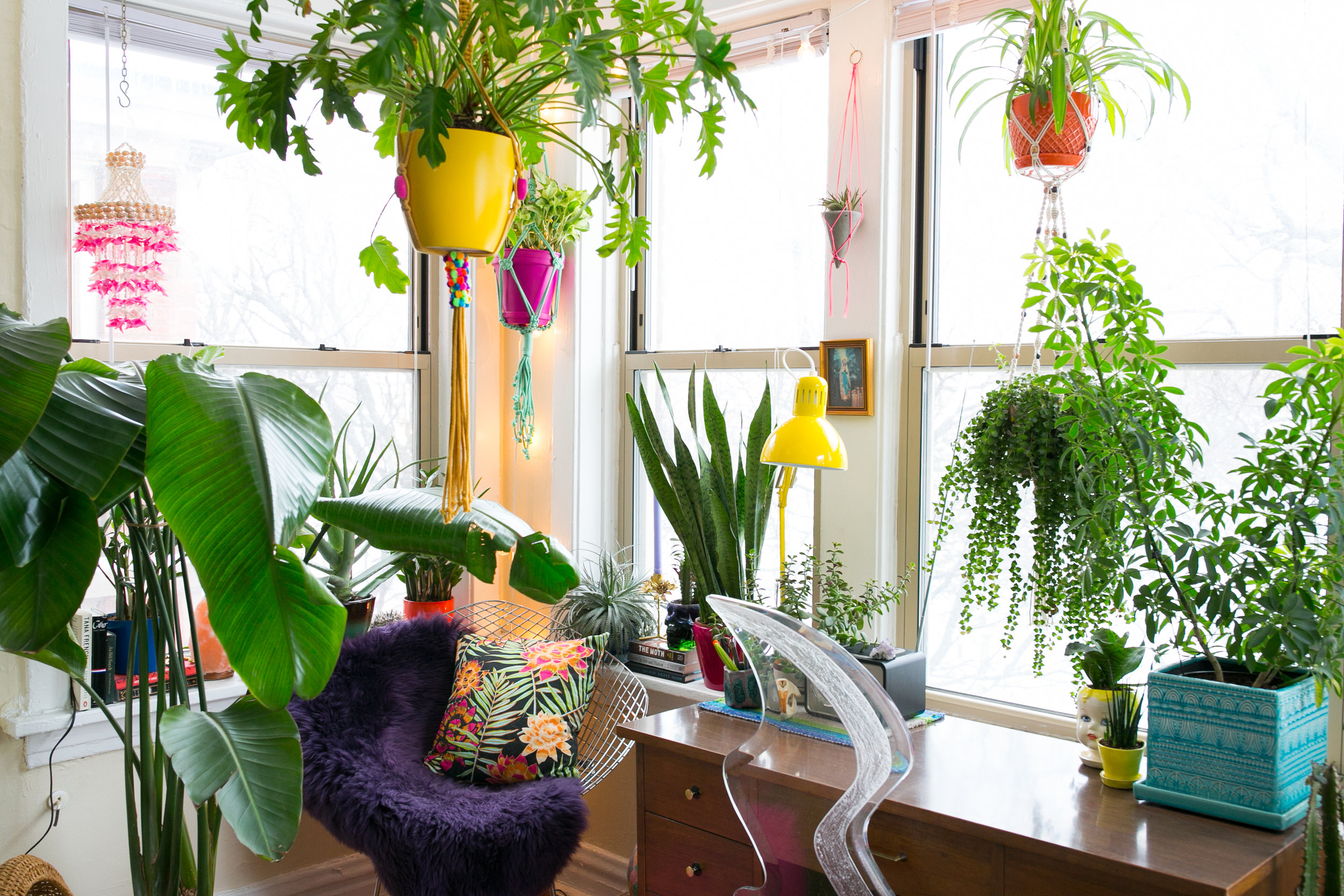 House Tours for Apartment Therapy