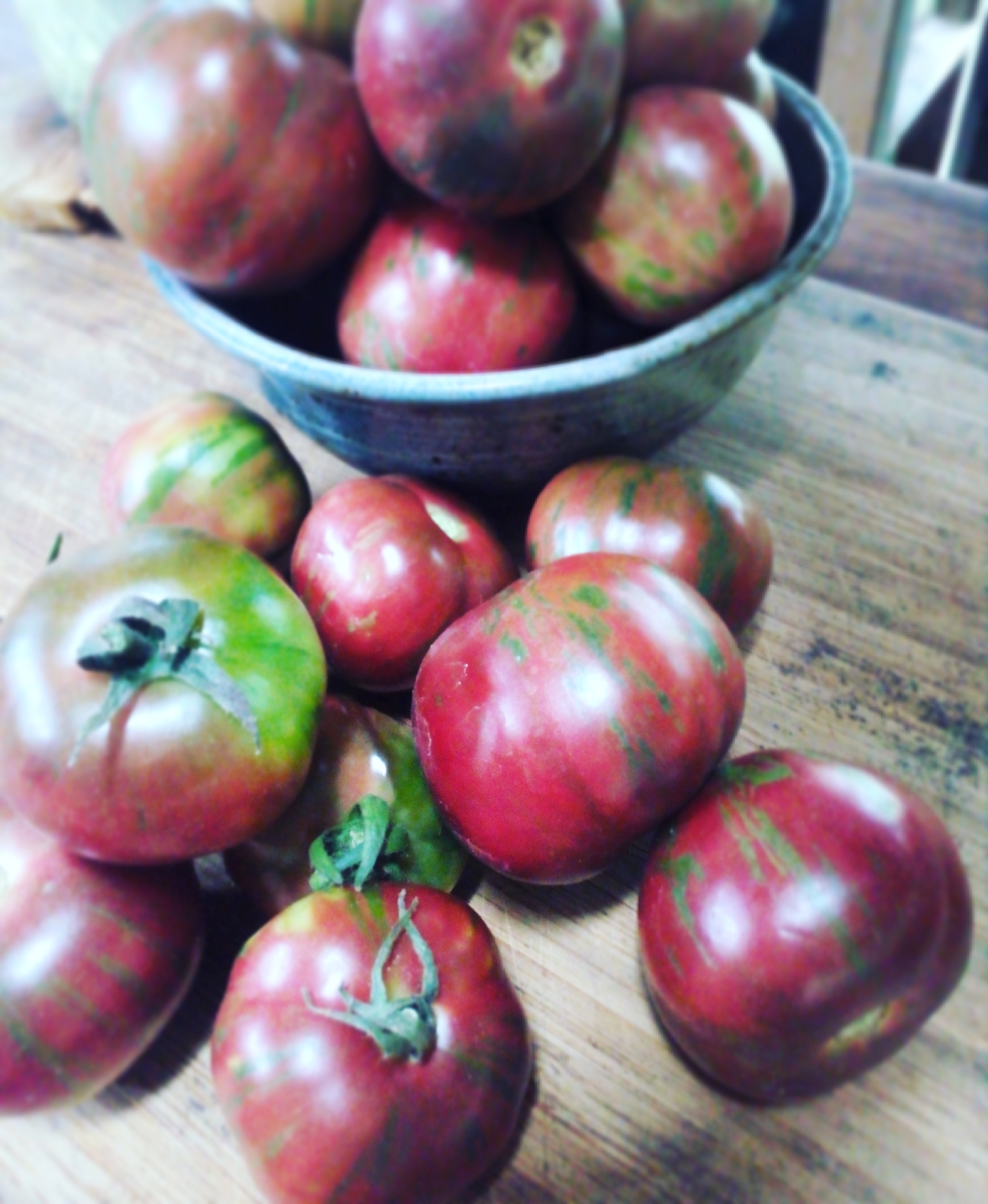 Tomatoes from the Land