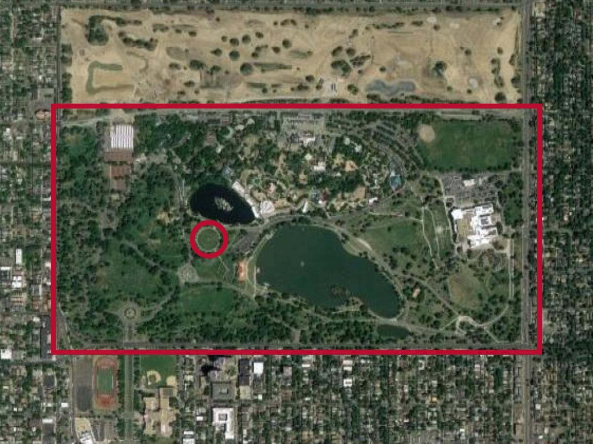 City Park Denver (2).jpg
