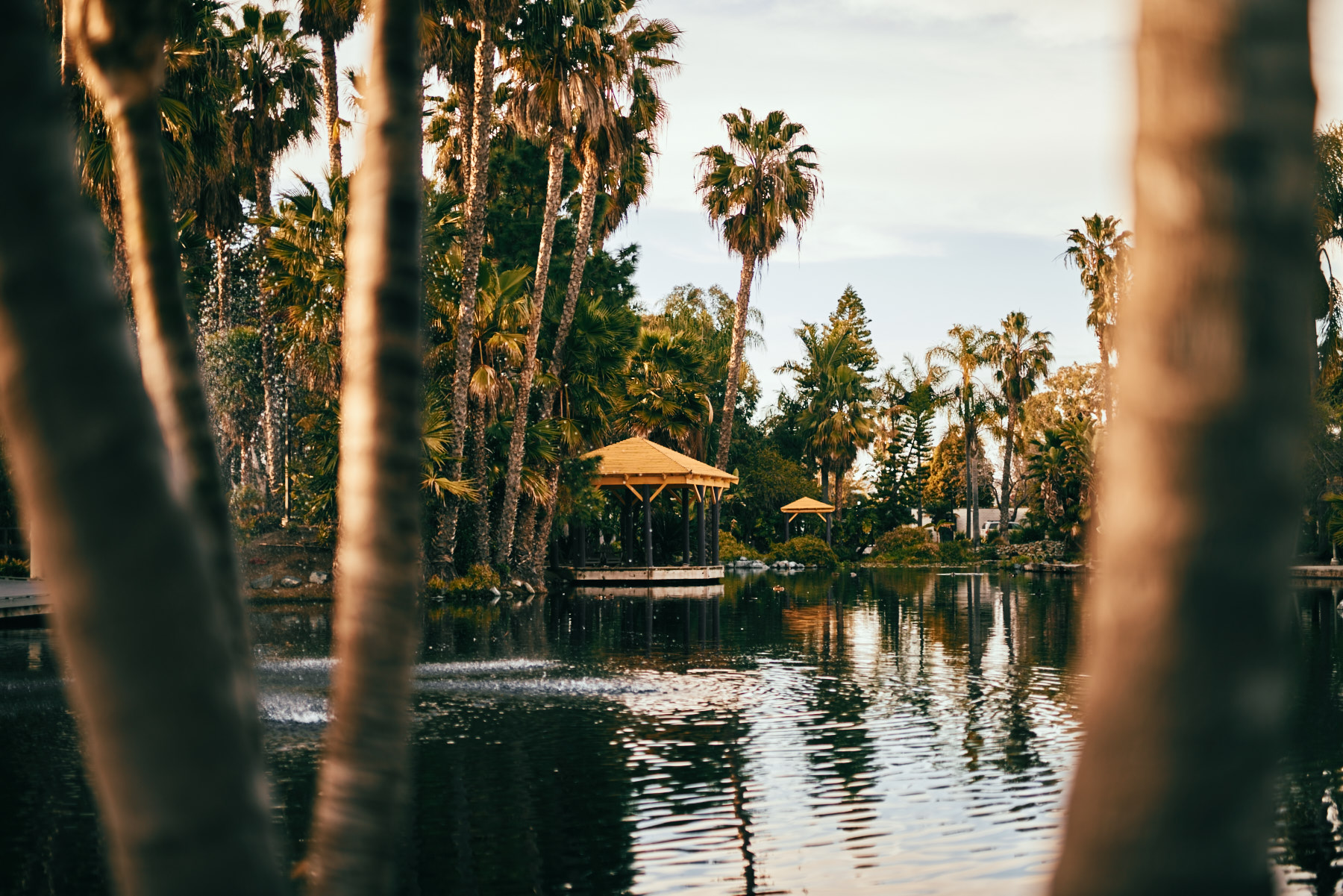 2019-3-4 San Diego Layover-011.jpg
