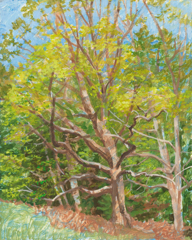 "Mildred's Lane 2, 2015, acrylic on panel, 10"" x 8"""