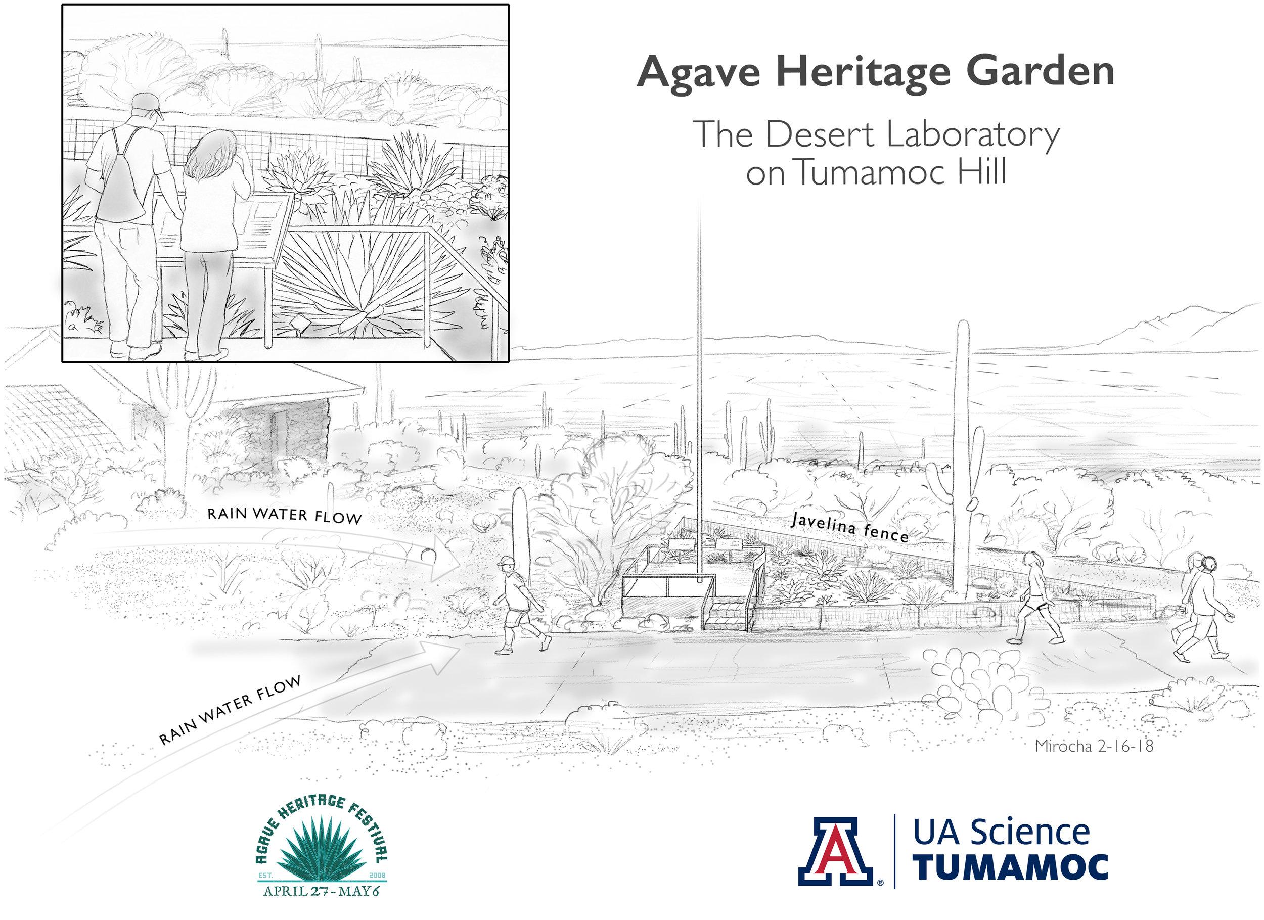 Agave Garden Planting.jpg