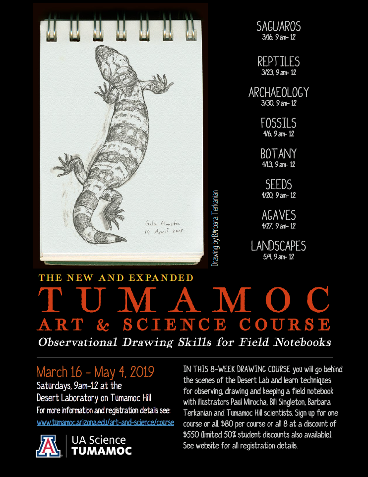tumamoc-art-science-course_flyer.png
