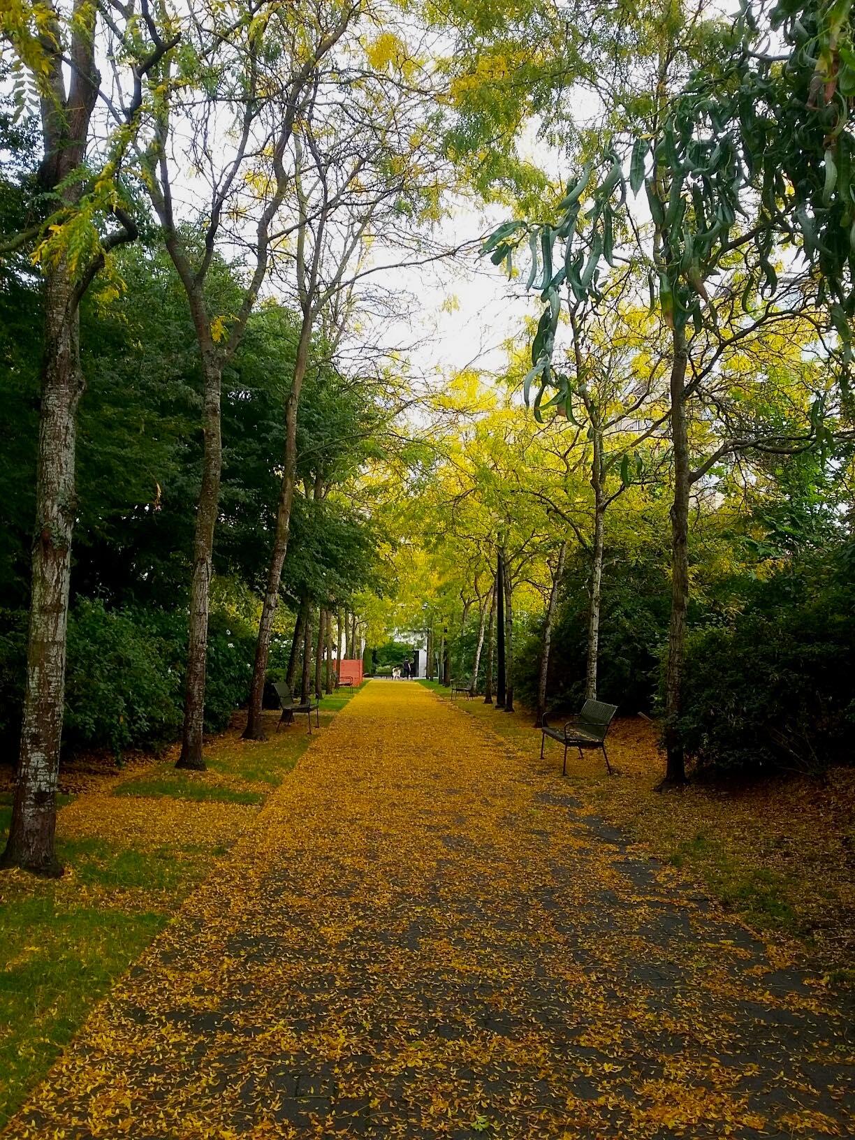 Autumn 2016 copy