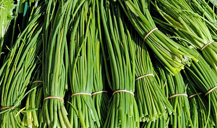 CHIVES -