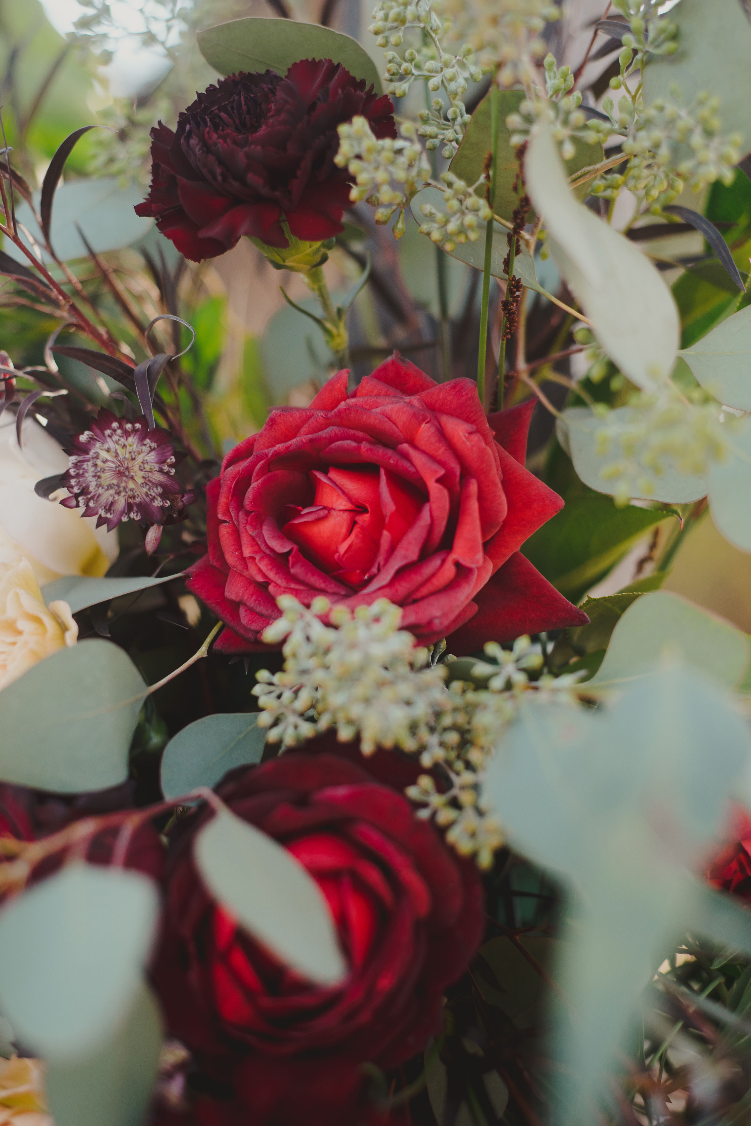 181026-Marisa-JB-Wedding-3391.jpg