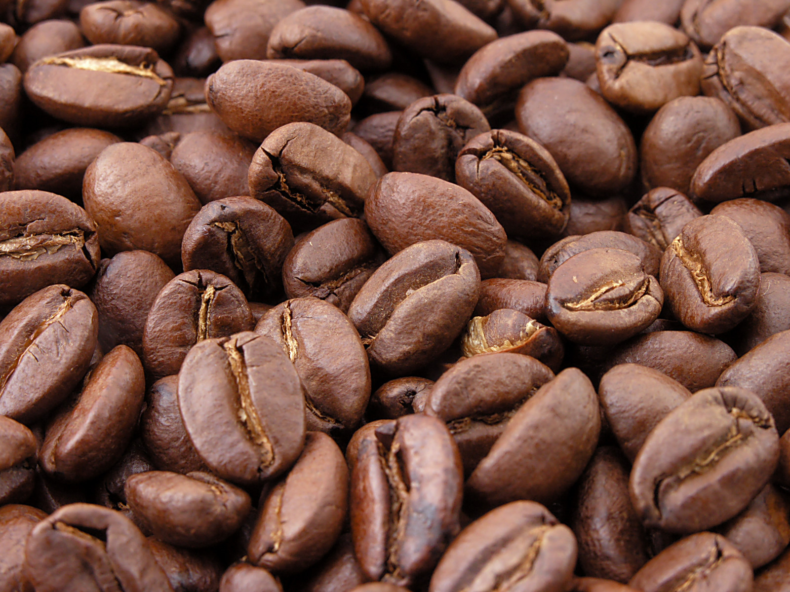 Spray-Dried Coffee