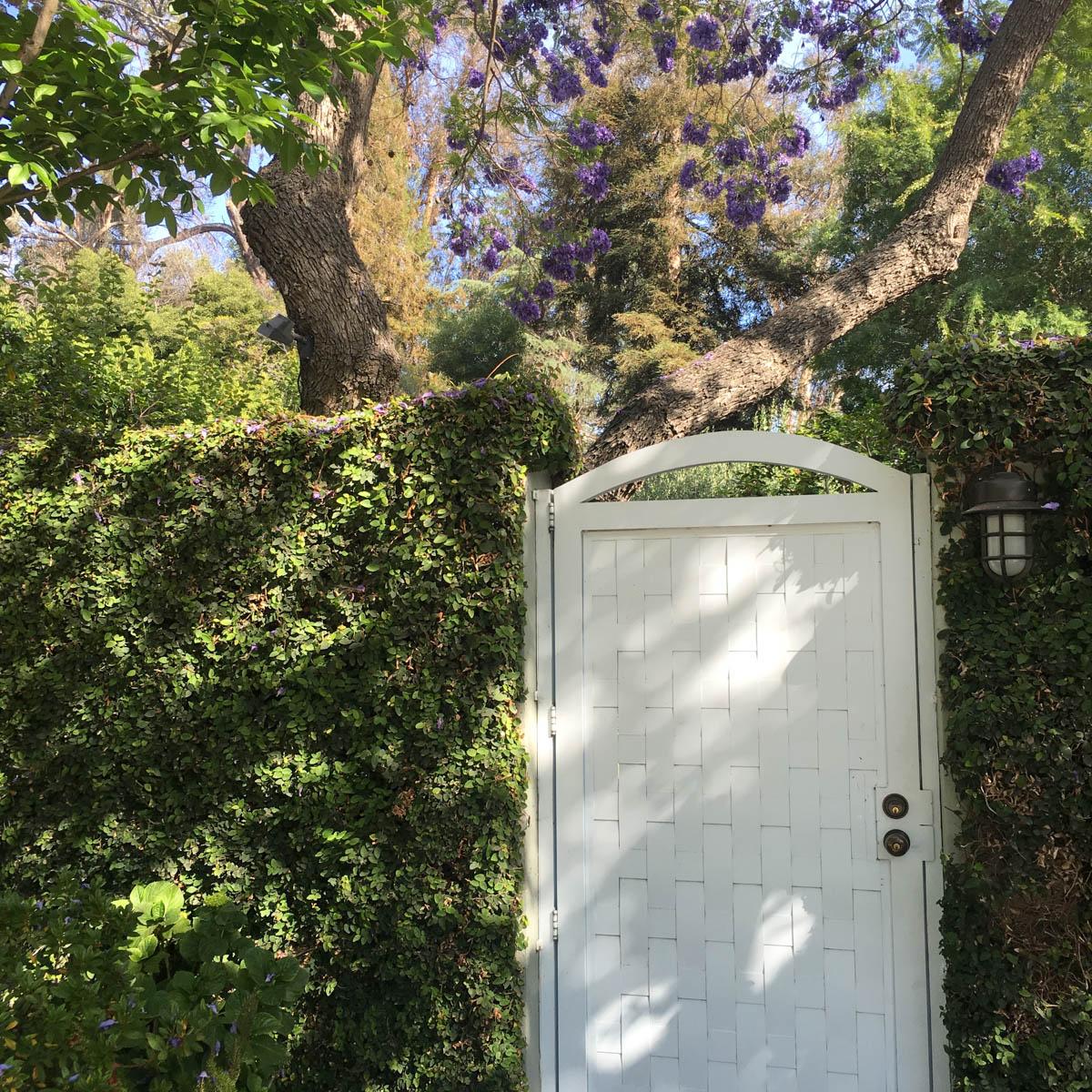 LA Daze - Los Feliz, CA