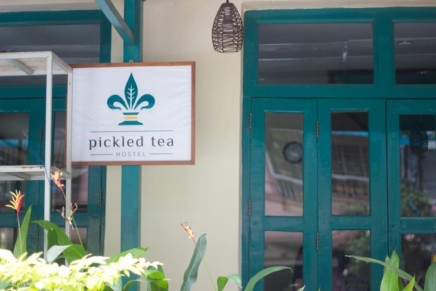 pickledtea-11.jpg