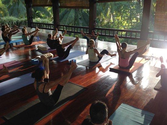 yoga-pavilion.jpg