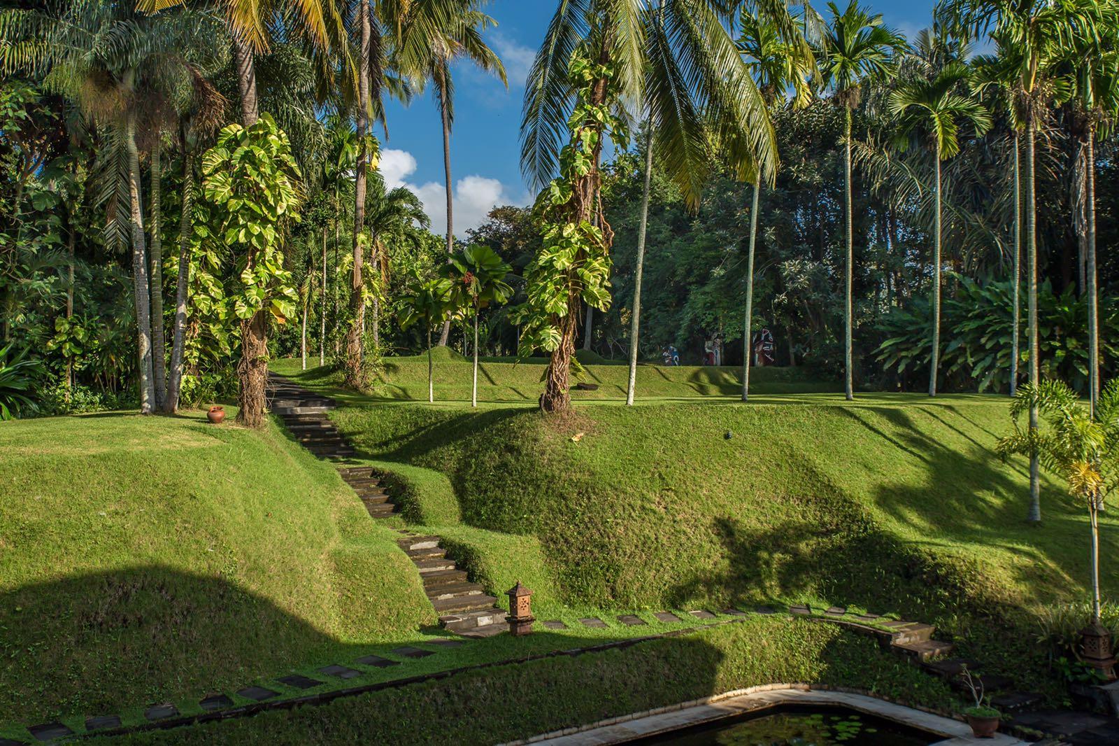garden AM 2.JPG