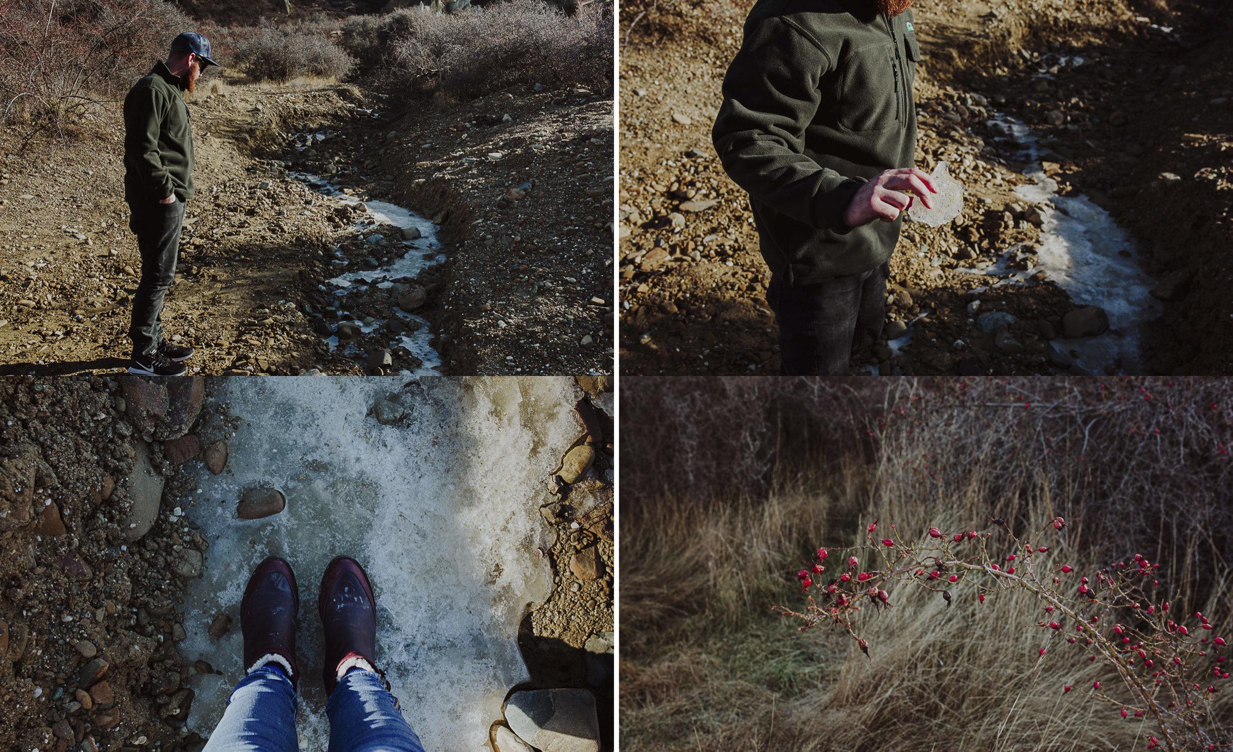 ElizaJadePhotography-8.jpg