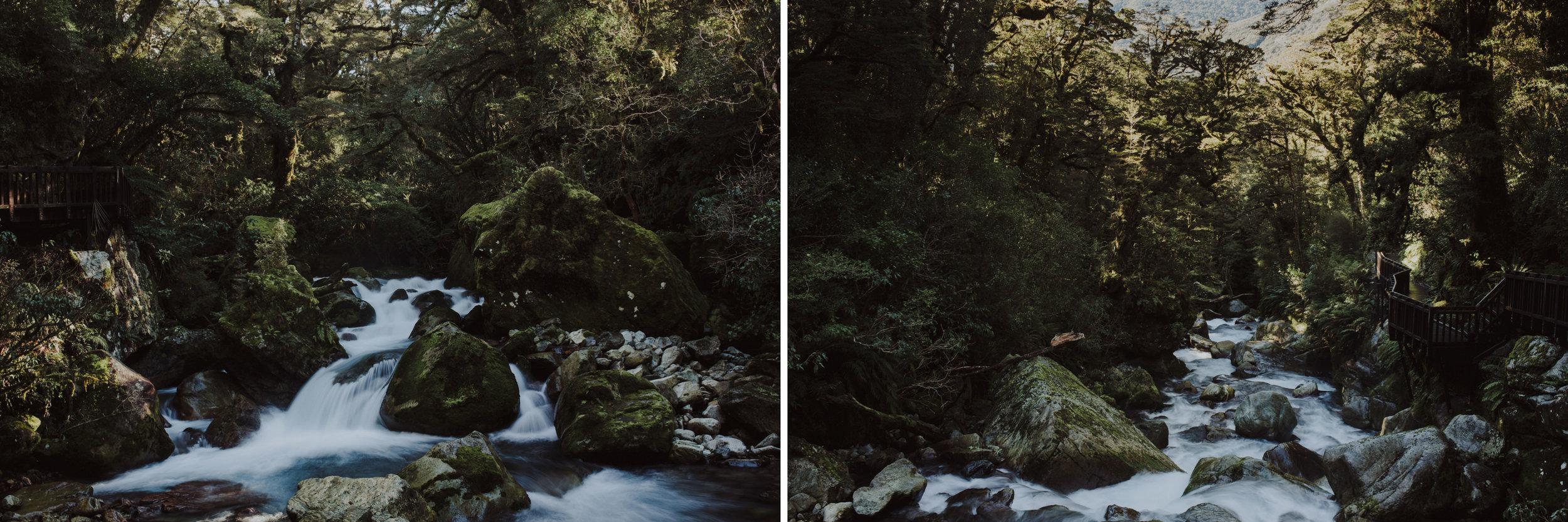 ElizaJadePhotography-5.jpg