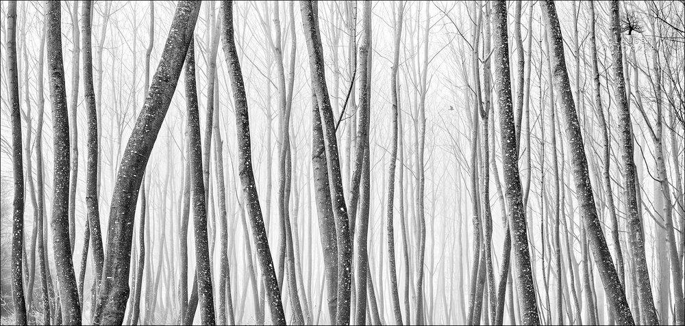 Fine_+Art_Landscape_Photography_Jannick_Clausen_2016-03-12+17.24.44.jpg
