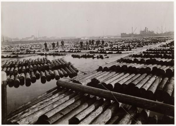 Transformation in Process - The rich history of the site as a woodworking harbor is the underlining theme for the next chapter as Amsterdam's creative city.