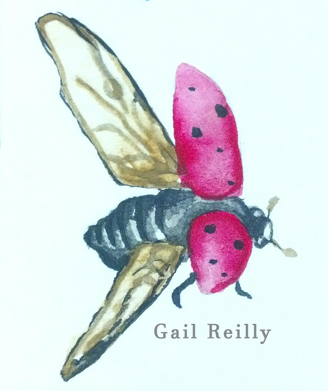 Gail Reilly Ladybug