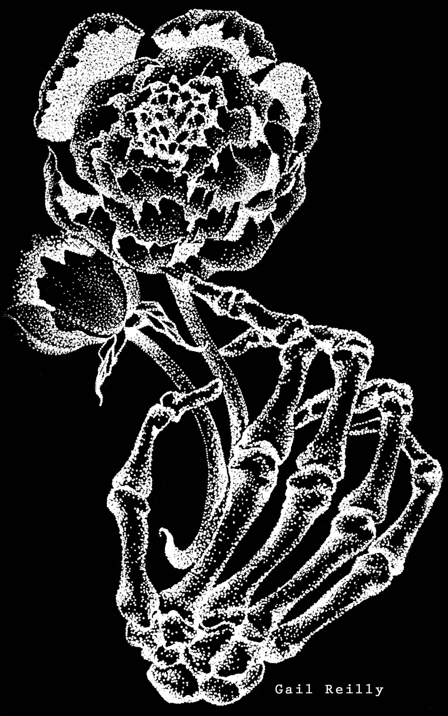 Gail Reilly - Skelehand