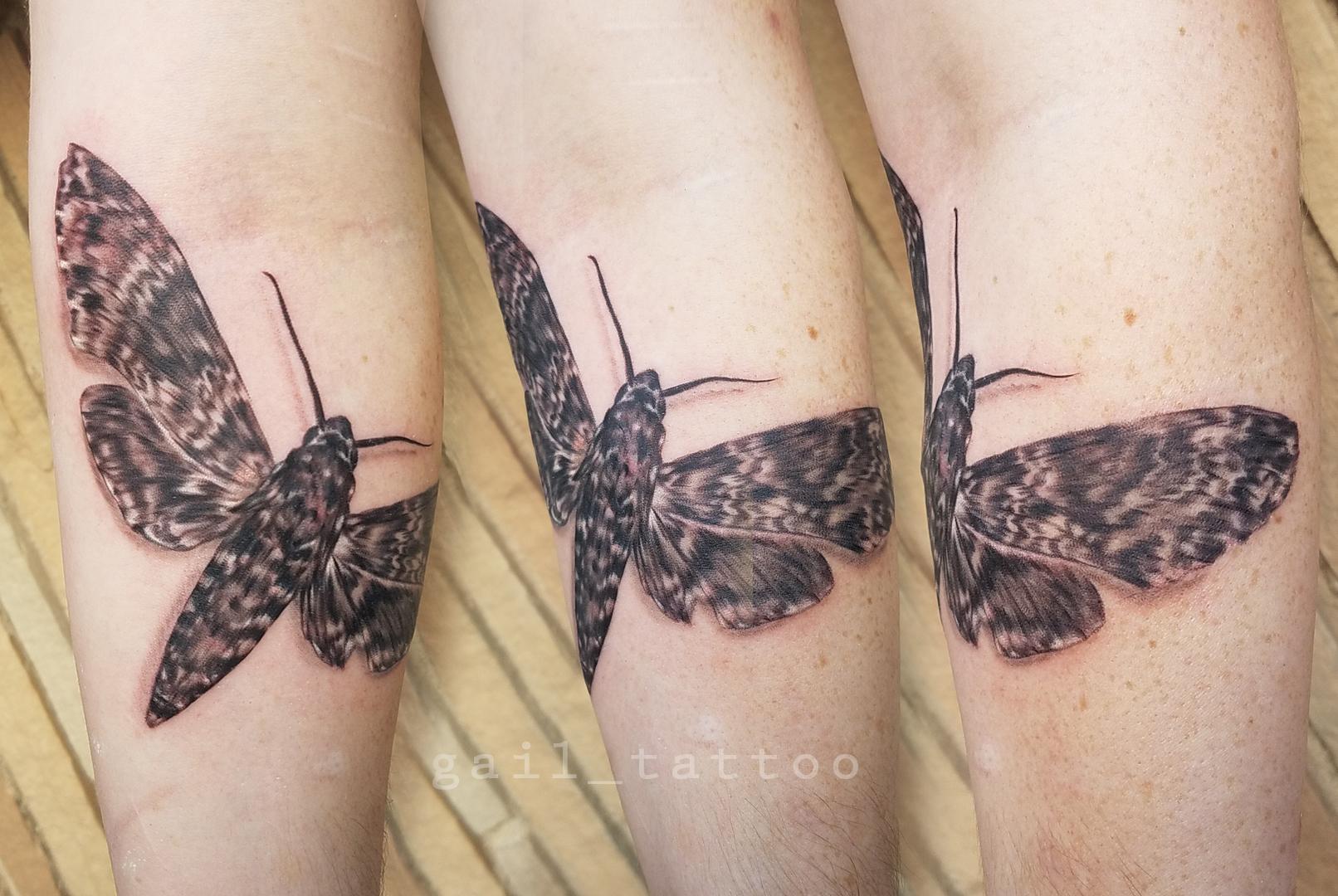 gailreilly_moth.jpg